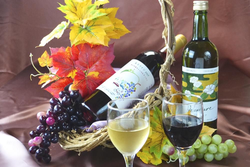 SAKURAセレクトワイン各種